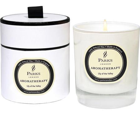 Vela perfumada Aromatherapy (lirio de los valles)