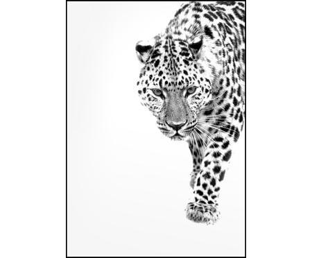 Impresión digital enmarcadaWhite Leopard