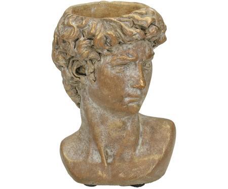 Macetero David