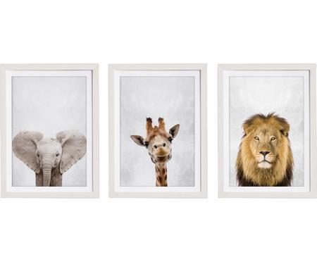 Set de impresiones digitales enmarcadas Wild Animals, 3pzas.